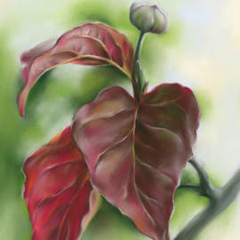 Red Autumn Dogwood Leaves with Bud by MM Anderson