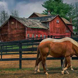 Red Barn Americana by Joann Vitali
