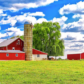 Red Barn In Pennsylvania by James Steele