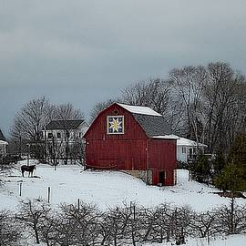 Red Barn Nestled In A Michigan Winter by Toni Abdnour