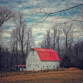 Red Barn by Tammera Carter