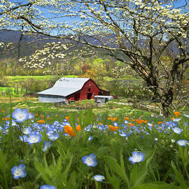 Red Barn Under the Dogwoods and Wildflowers Painting by Debra and Dave Vanderlaan