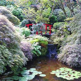 Red Bridge and Koi Pond - Butchart Japanese Gardens Victoria - Scenic Canada by Brooks Garten Hauschild