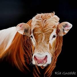 Red bull by Rianns Art