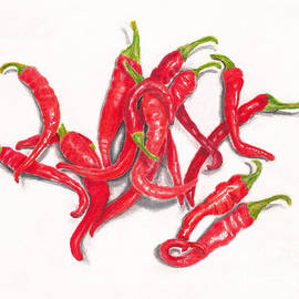 Red Cayenne Peppers from My Garden on White by Conni Schaftenaar