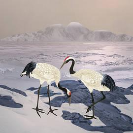 Red Crowned Crane Pair by Spadecaller