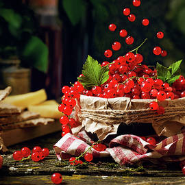 Red Currant by Ivan Mikhaylov