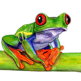 Red-eyed treefrog by Loren Dowding