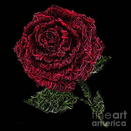 Red Fiber Rose by Bilancy Art