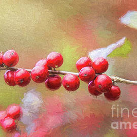 Red Holly Berries  by Sharon McConnell