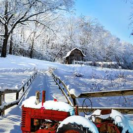 Red in the Snow II by Debra and Dave Vanderlaan