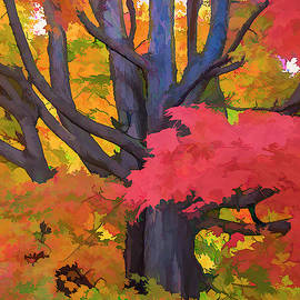 Red Maple Frosting 3 by Ginger Stein