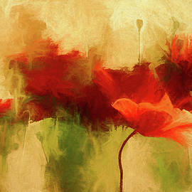 Red poppies by Andreas Wemmje