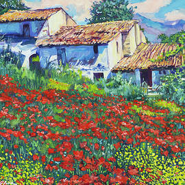 Red Poppies Of Abruzzo Italy by David Lloyd Glover