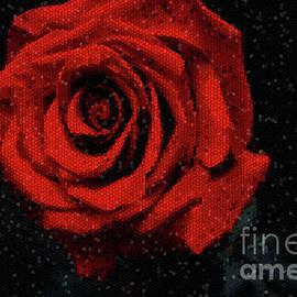 Red rose frozen in time by Chris Bee Photography
