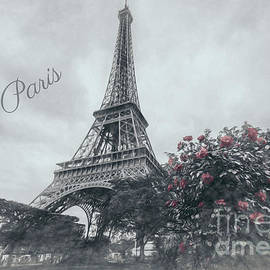 Red Roses At Eiffel Tower Garden, Paris, Greyscale by Liesl Walsh