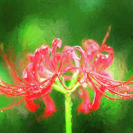 Red Spider Lily in Rain by Bellesouth Studio
