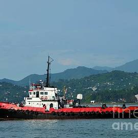 Red tug boat at sea with mountain background traveling in Black Sea Batumi harbor Georgia by Imran Ahmed