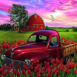 Red Tulips Red Truck Red Barn by Debra and Dave Vanderlaan