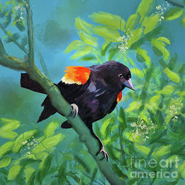 Red-Winged Blackbird On Display by Lois Bryan