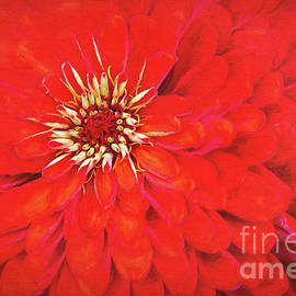 Red Zinnia by Sharon McConnell