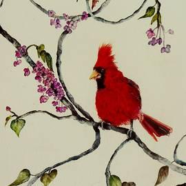 Redbud Redbird by Lil Taylor