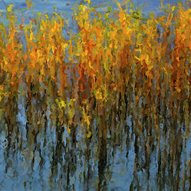 Reeds in a Lake by Rob Hemphill