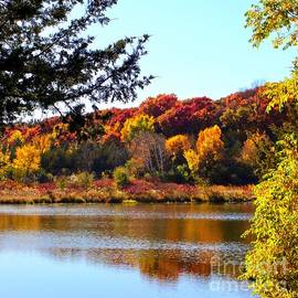 Reflections of Autumn, Minnesota by Ann Brown