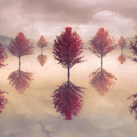 Reflections on a Peaceful Autumn Morning by Debra and Dave Vanderlaan