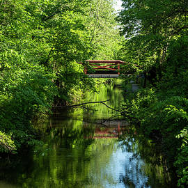 Reflections On The Canal by Denise Harty