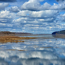 Reflections by Tricia Marchlik