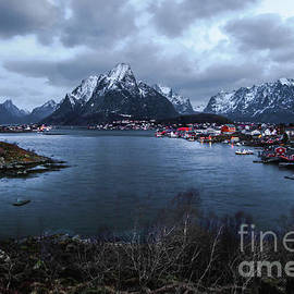 Reine Norway Overlook by Norma Brandsberg