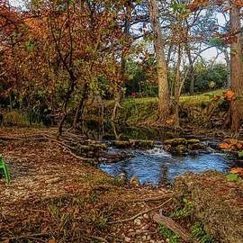 Relax at Cypress Creek by Judy Vincent