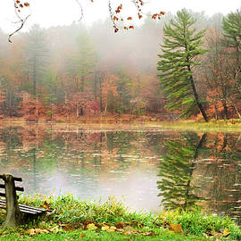 Relaxing Autumn Beauty Landscape by Christina Rollo