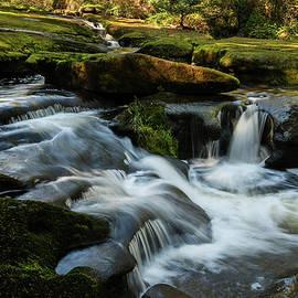 Renewed - Waterfall Art by Jordan Blackstone