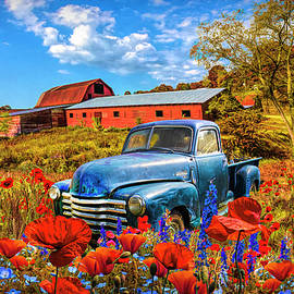 Resting in Early Autumn Poppies by Debra and Dave Vanderlaan