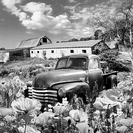 Resting in Poppies Black and White by Debra and Dave Vanderlaan