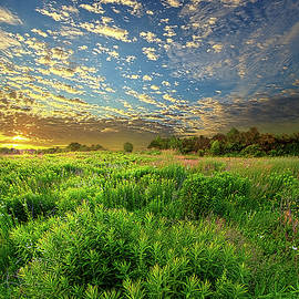 Revive Your Heart by Phil Koch