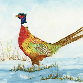 Ring-Neck Pheasant in the Snow watercolor