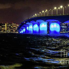 Ringling Bridge Sarasota Florida 2 by Lynne Pedlar