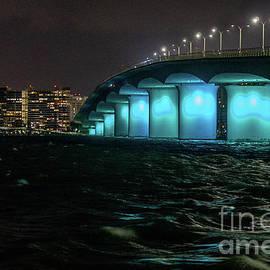 Ringling Bridge Sarasota Florida by Lynne Pedlar
