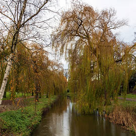 River Dommel in the Netherlands by IC Papachristos