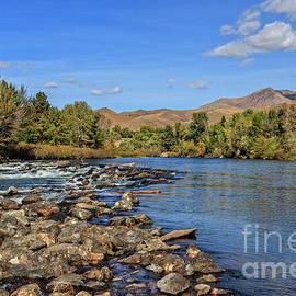 River Eye View by Robert Bales