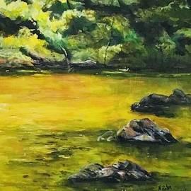 River Rocks by Nancy Rabe
