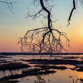 River Sunset in Botswana by Kay Brewer