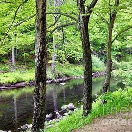 River Walk  by Jessica Mumford