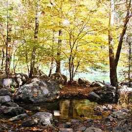 Riverside Reflections by Marilyn DeBlock