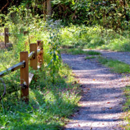 Road and Split-Rail Fence Landscape by Brian Wallace