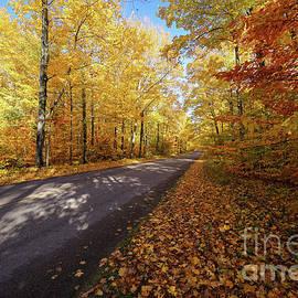 Road to Miners Castle Autumn by Rachel Cohen