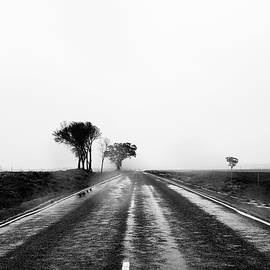 Road to the Sky by Angelika Vogel